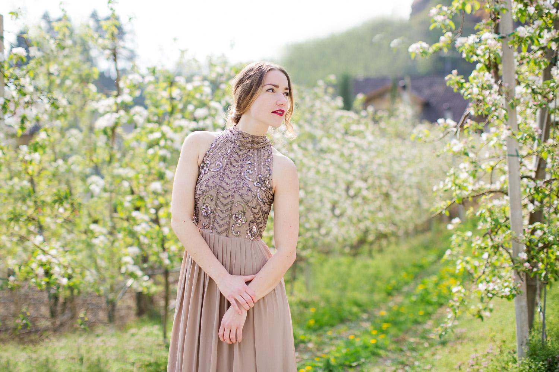 Apfelblüte in Bozen