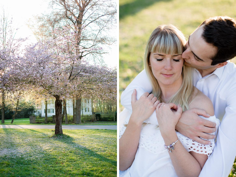 Lovestory zur Kirschblüte